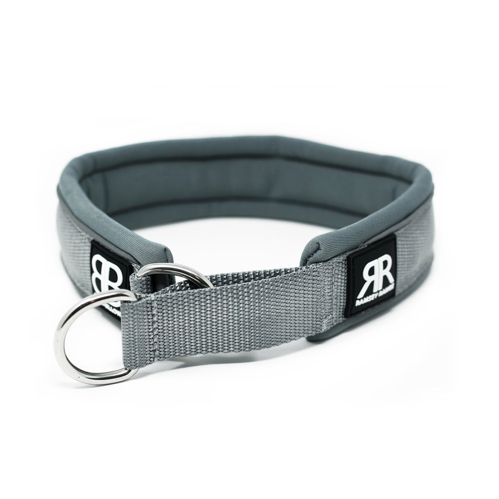 Bully Billows - 4cm Ramsey Range - Metal Grey Dog Collar - Bulletproof Pet Products Inc