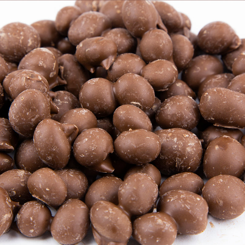 Chocolate Dipped Peanuts 12 oz. Bag