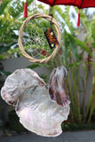 NEW Balinese Shell Dream Catcher -  BOHO Style Homewares - BALI Shell Windchime