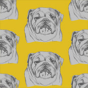 BULLDOG WALLPAPER MUSTARD