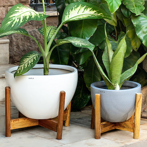 Planters with Wooden Stands
