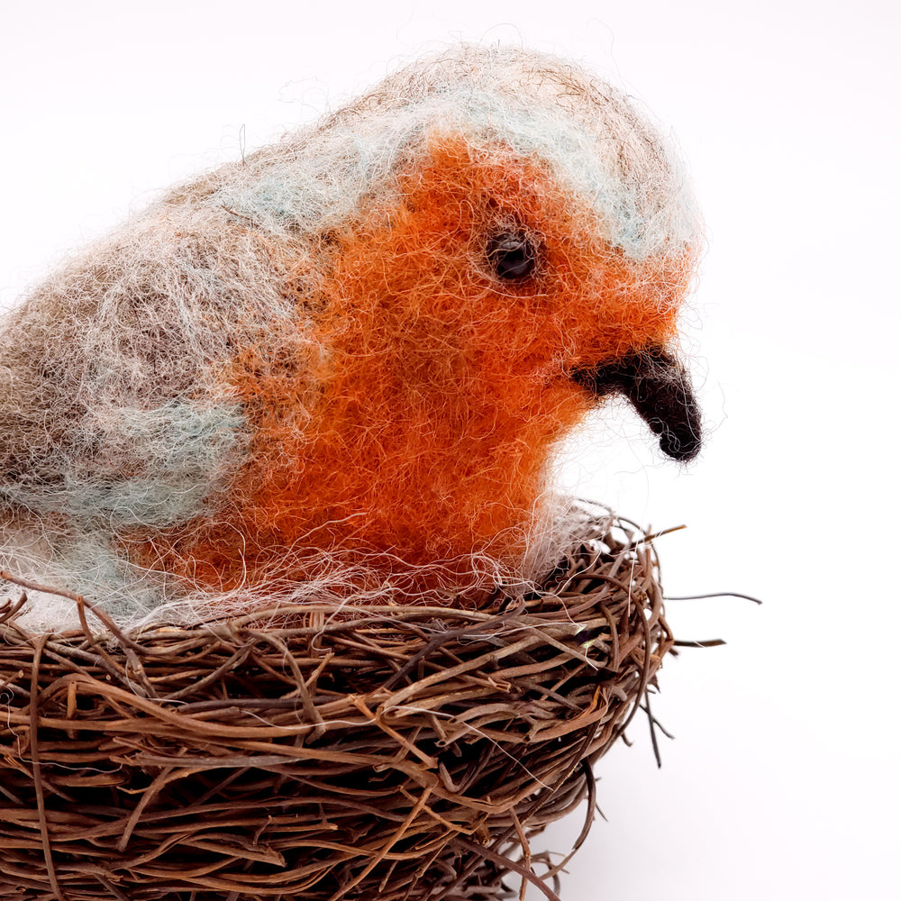 Load image into Gallery viewer, Engligh Robin in Nest