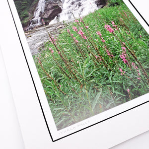 Ithaca Falls Matted Print