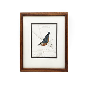 Load image into Gallery viewer, Quilled Thrush Artwork