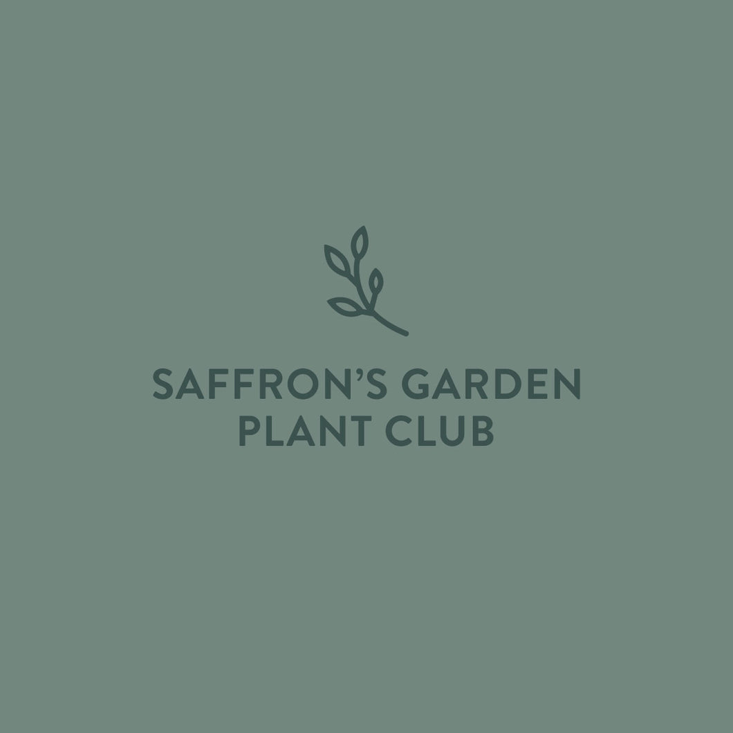 Gift Card: Plant Club Subscrition