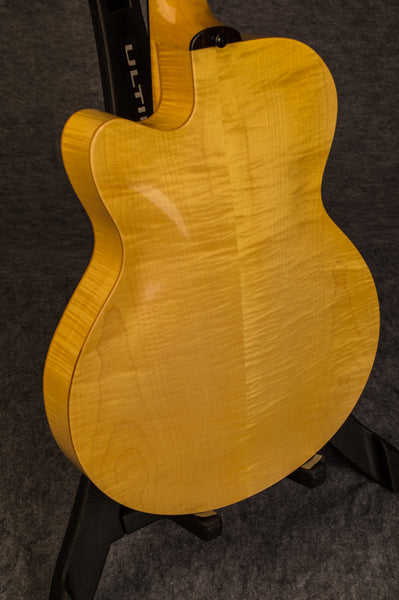 American Archtop Guitar Back Bucky Pizzarelli