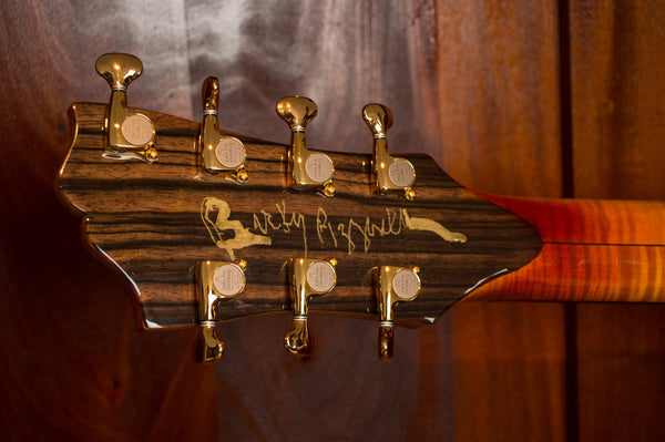Bucky Pizzarelli guitar