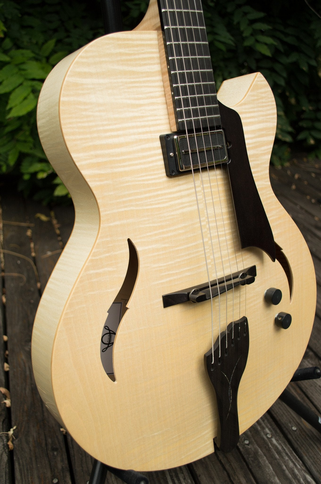 Collector American Archtop