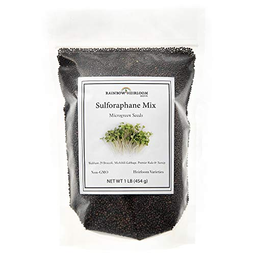 Sulforaphane MICROGREEN Seed Mix | Perfect for Microgreen Growing Trays | Kale, Cabbage, Turnip & Broccoli Sprouting Seeds | Non GMO Heirloom Seeds | 1 LB Resealable Bag | Rainbow Heirloom Seed Co.