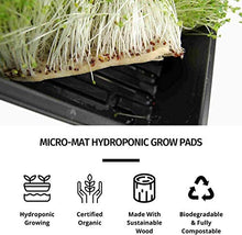 "Load image into Gallery viewer, Handy Pantry Micro-Mats Hydroponic Grow Pads - for Organic Production - 50 Pack - Plant & Seed Germination: Wheatgrass, Microgreens, More - for 20"" x 10"" Greenhouse Trays"