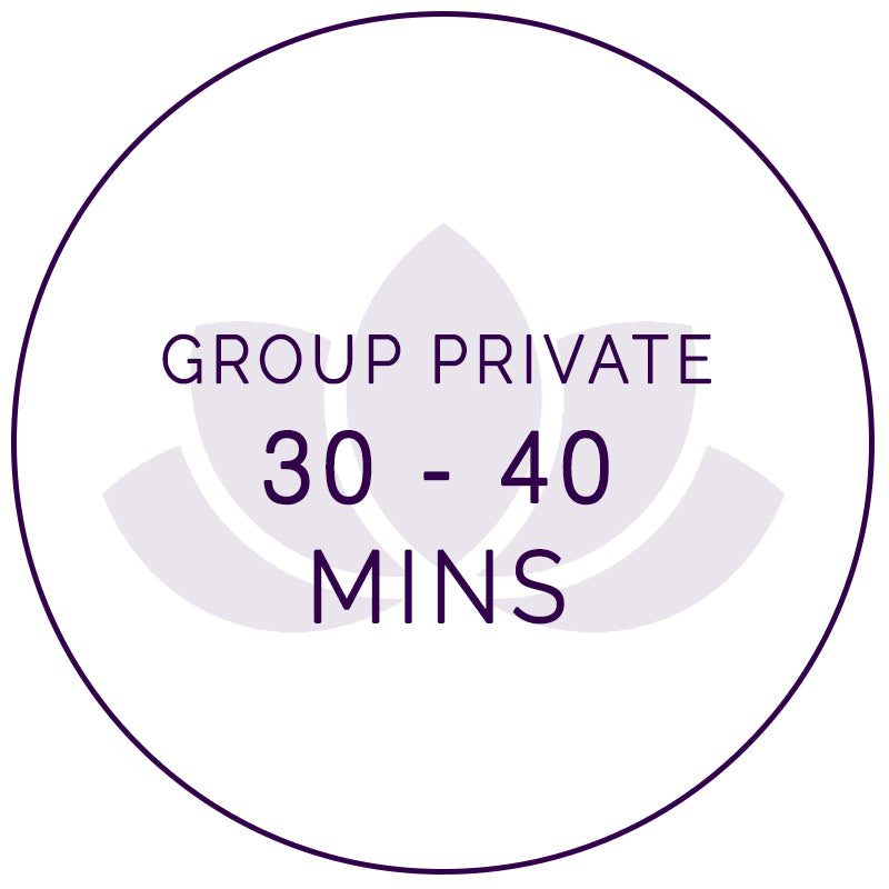 30-45 mins Online Private Group Class