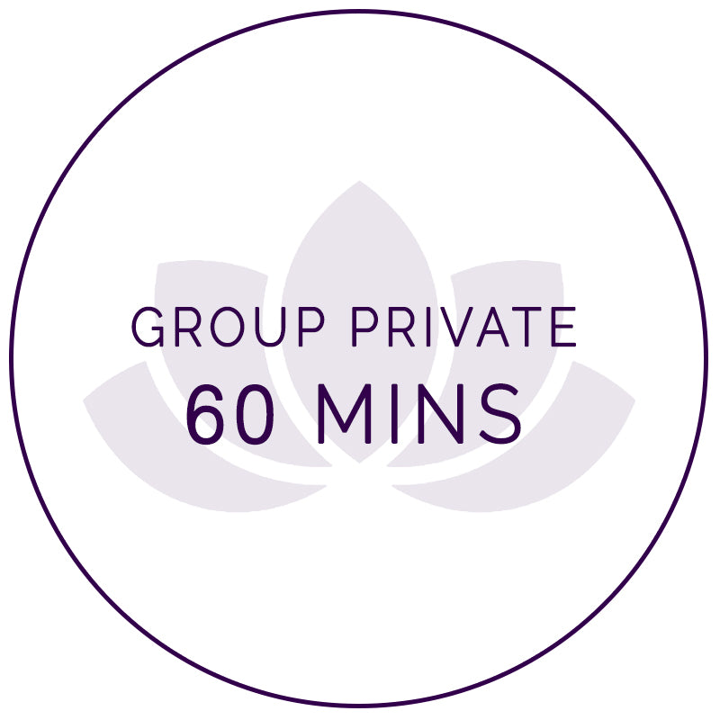 60 mins Online Private Group Class