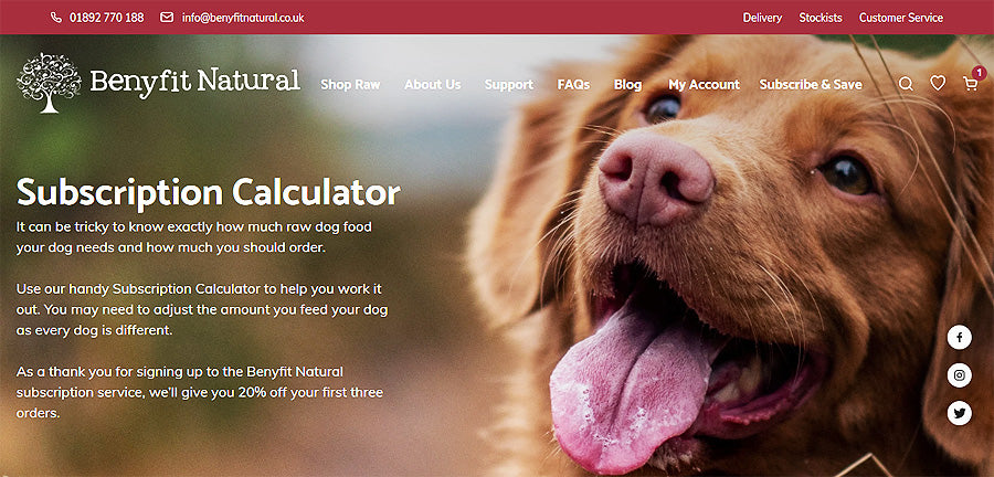 Benyfit Raw Dog Food Subscription Service