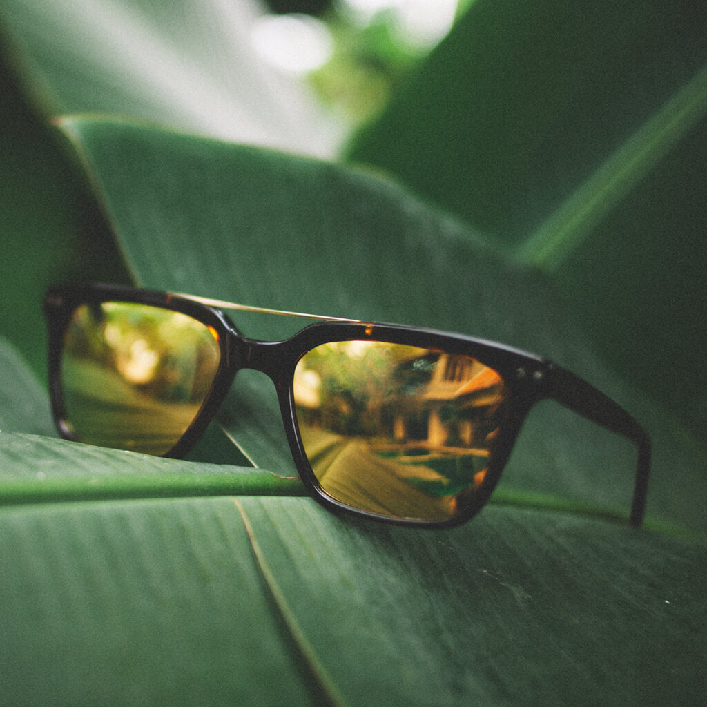 45th Parallel Cotton-Based Acetate Eco Sunglasses with Polarized Lenses