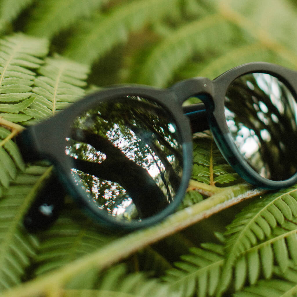 Banks Cotton-Based Acetate Eco Sunglasses with Polarized Lenses