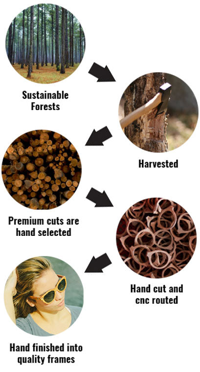 5829c80b3c1 All species of wood are collected from certified sustainable forests in  Northern America. The wood is harvested