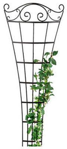 Romantic Fan Trellis