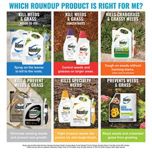 Load image into Gallery viewer, Roundup Ready-To-Use Extended Control Weed & Grass Killer Plus Weed Preventer II Refill