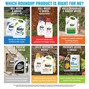 Roundup For Lawns Ready-to-Use