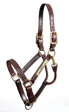Halters and Leads