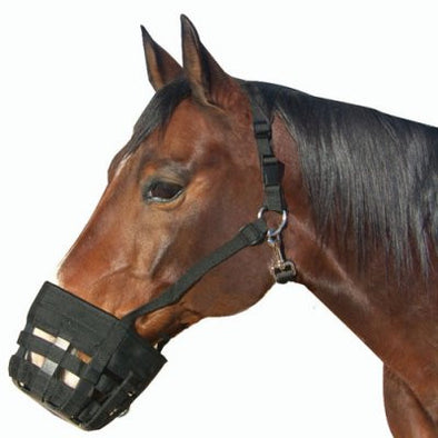 Best Friend Deluxe Grazing Muzzle - The Tack Shop of Lexington