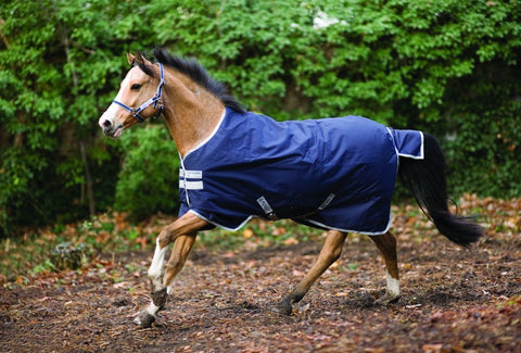Amigo Bravo 12 Medium Pony Blanket - The Tack Shop of Lexington