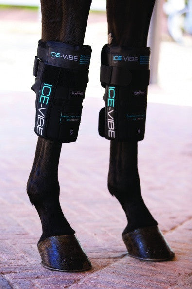 Ice-Vibe Knee Wraps - The Tack Shop of Lexington
