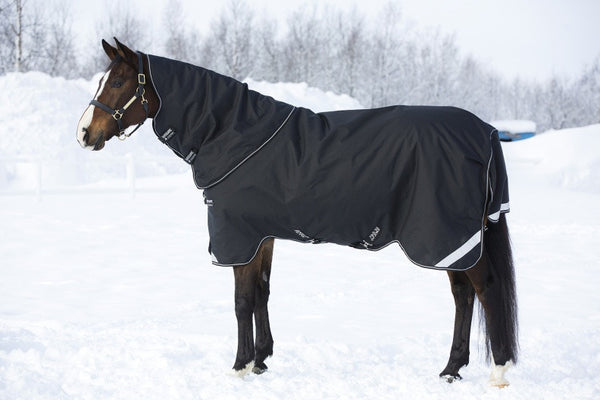 Amigo Bravo 12 Plus Heavy Blanket - The Tack Shop of Lexington