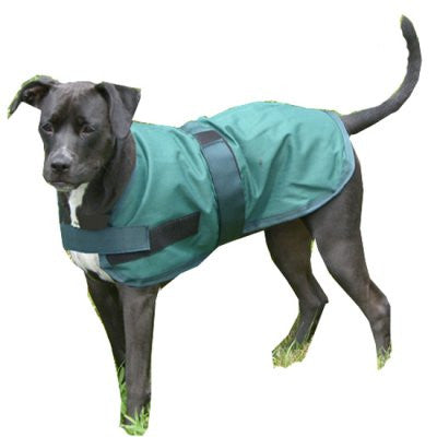 High Spirit Dog Rain Coat - The Tack Shop of Lexington - 1