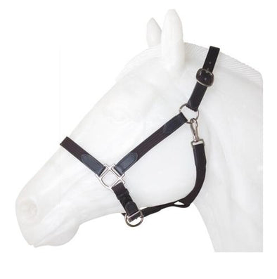 Americana Web-Leather Halter - The Tack Shop of Lexington - 1