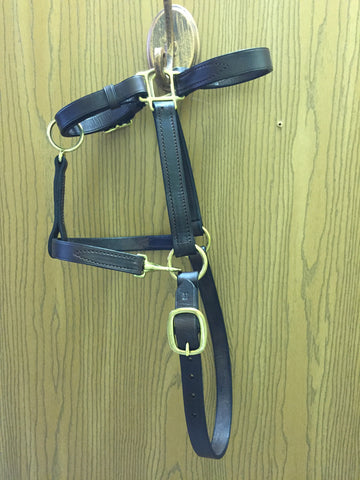 Bluegrass Leather Turn Out Halter - The Tack Shop of Lexington