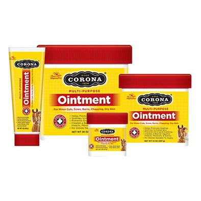 Corona Ointment - The Tack Shop of Lexington