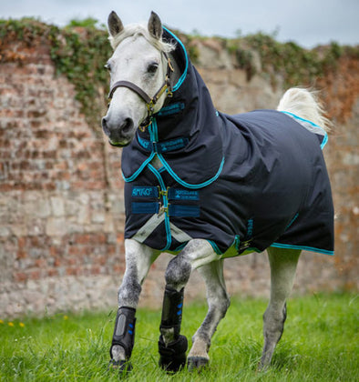Amigo Bravo Pony Plus Medium Turnout Blanket