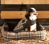 Kensington Insulated Dog Coat - The Tack Shop of Lexington