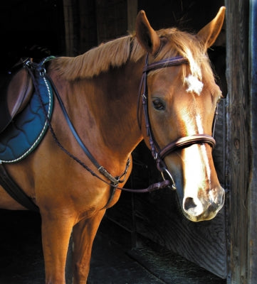 Smith Worthington Stitched Adjustable Breastplate