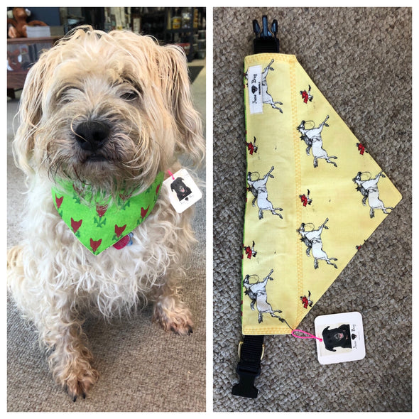 June Bug Dog Bandana