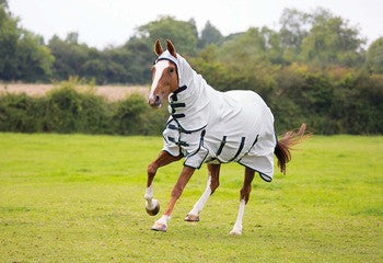 Shires Sweet Itch Combo Fly Sheet - The Tack Shop of Lexington
