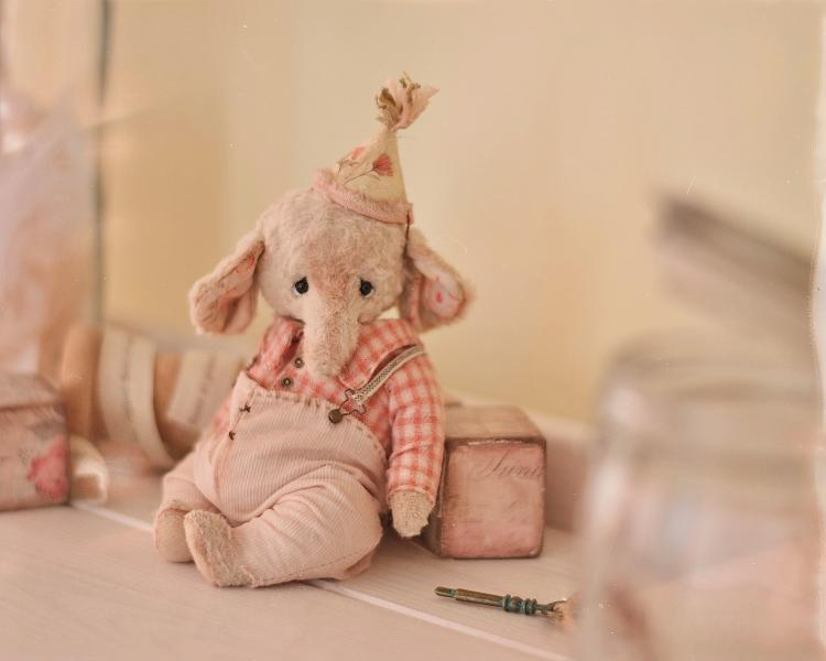 Teddy Elephant