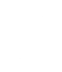 Body Manipulations LLC