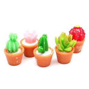 LF 10Pcs Mini Resin Succulents Decoration Crafts Flatback Cabochon Figurines & Miniatures For Home Decoration Accessories Modern