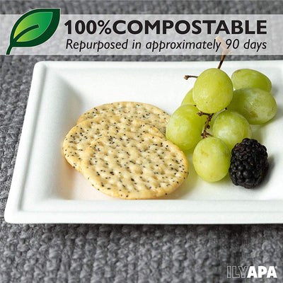 100 Square Disposable Plates Set for Appetizer or Dessert - 6 Inch White Compostable, Biodegradable & Microwavable Sugarcane Tree Free Plates