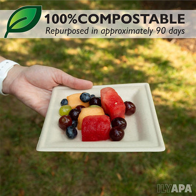 100 Biodegradable Disposable Plates - 6 Inch Square Compostable & Microwavable Wheat Straw, Tree Free Plates for Dessert or Appetizer, Bulk Set