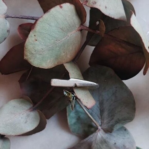 Silver ring on eucalyptus leaf background