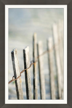 Driftwood Fence