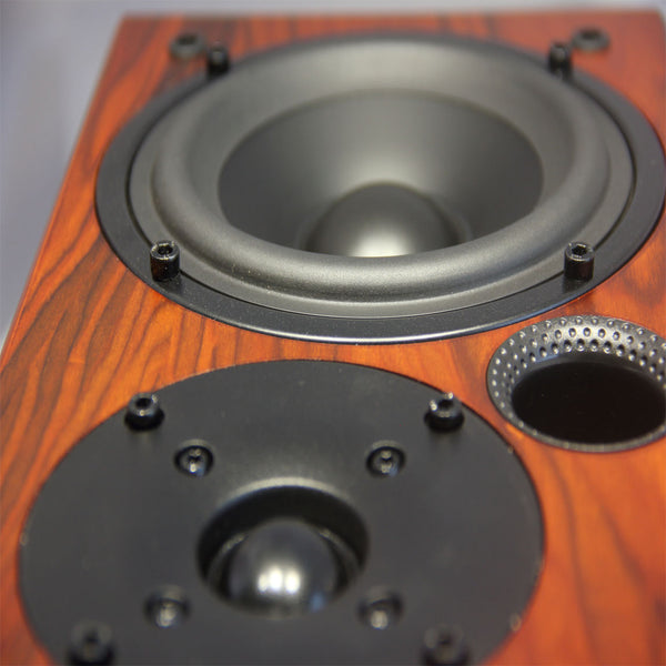 TUNERSYS 5 Inch Bookshelf Passive Speaker S162RS -one Piece
