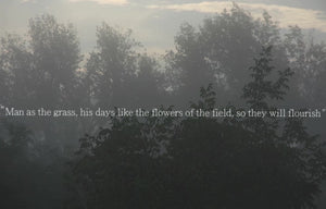 Man as the grass, his days like the flowers of the field, so they will flourish (version 2)