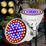 Hydroponic Grow Light - Phyto Led B22