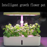 Indoor Hydroponic Planter with Grow Lamp