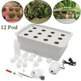 12 Hole Hydroponic Garden Planter System
