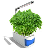 Herb Garden Hydroponics Kit With Adjustable Indoor Lamp Led